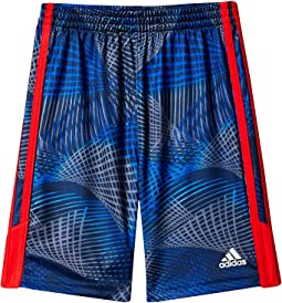 Amplified Net Shorts (Toddler/Little Kids)