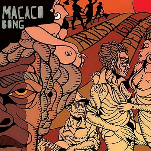 BONG PEDREIRO BAIXAR MACACO ARTISTA IGUAL
