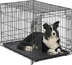 Best Dog Crate for Irish Wolfhound