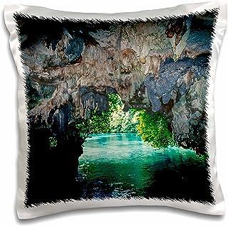 "3dRose pc_187104_1 White Tip Reef Shark, Sipadan Island, Barracuda Point, Malaysia Pillow Case, 16 x 16"""