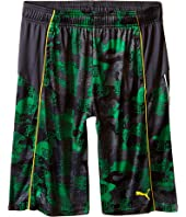 Puma Kids - Fall Printed Shorts (Big Kids)
