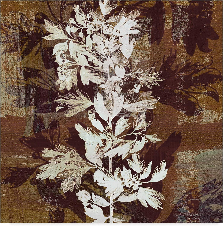 Trademark Fine Art Prairie Mix Iii by John Butler, 14x14-Inch