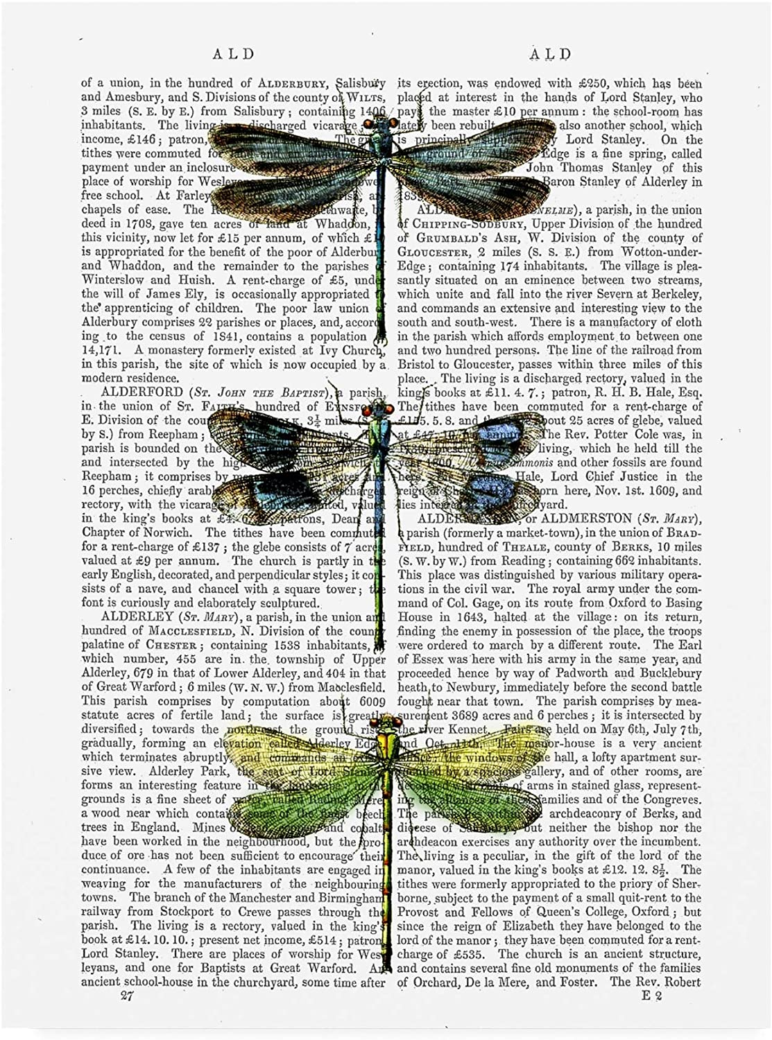 Trademark Fine Art Dragonflies Print 2 by Fab Funky, 14x19