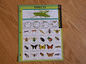 Insects Ready Reference