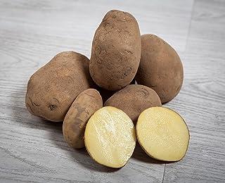 10 Mejor Venta De Patatas De Consumo de 2020 – Mejor valorados y revisados