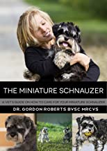 The Miniature Schnauzer: A vet's guide on how to care for your Miniature Schnauzer