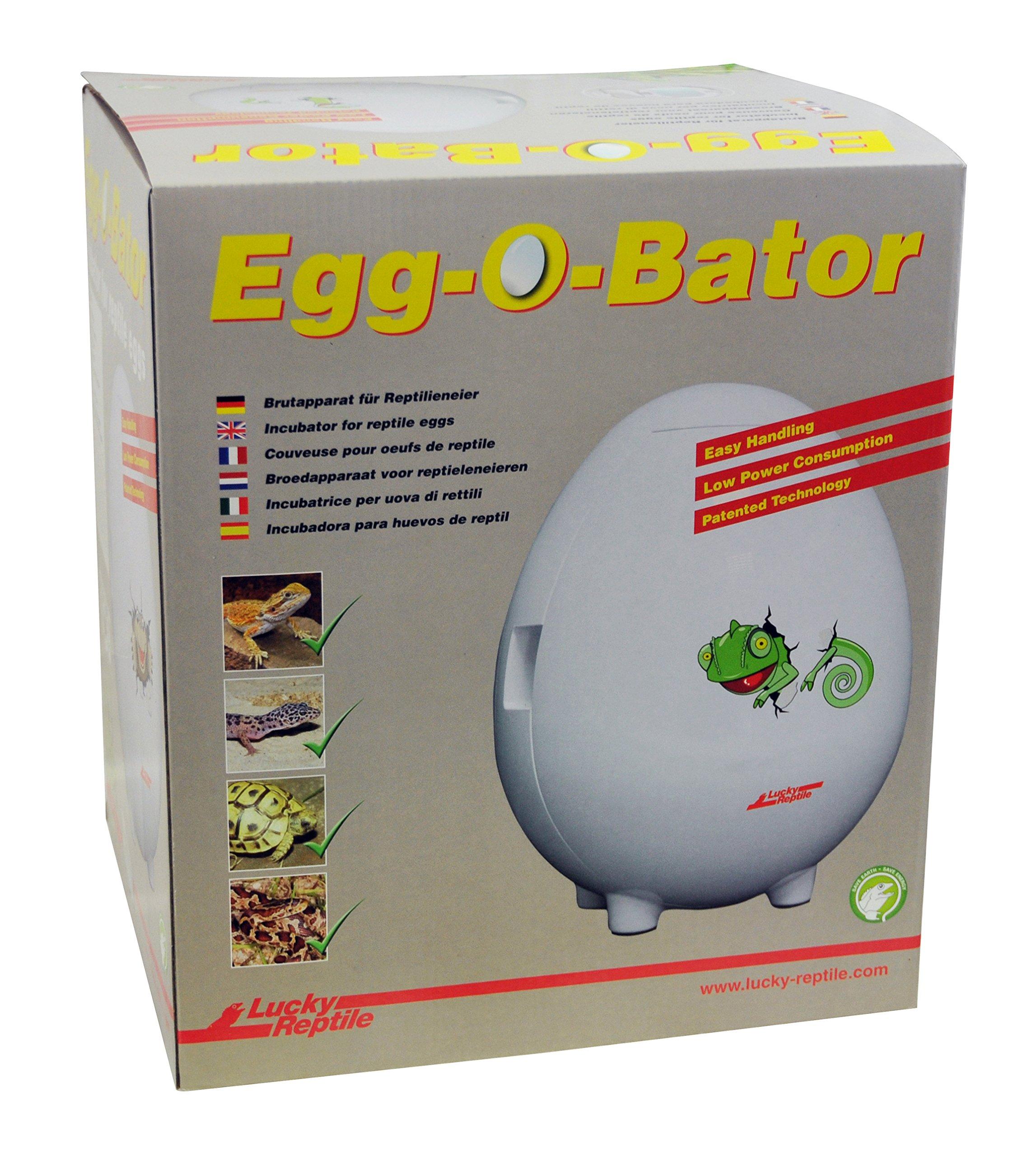 23L 6000 Ztopia Reptile Egg Incubator 23L Capacity Mini Digital Incubator ReptiPro 6000 Hatcher Hot Reptile Incubators for Hatching Eggs