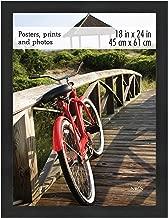 MCS 68857 68856 Poster Frame, 18 x 24 Inch, Onyx Woodgrain