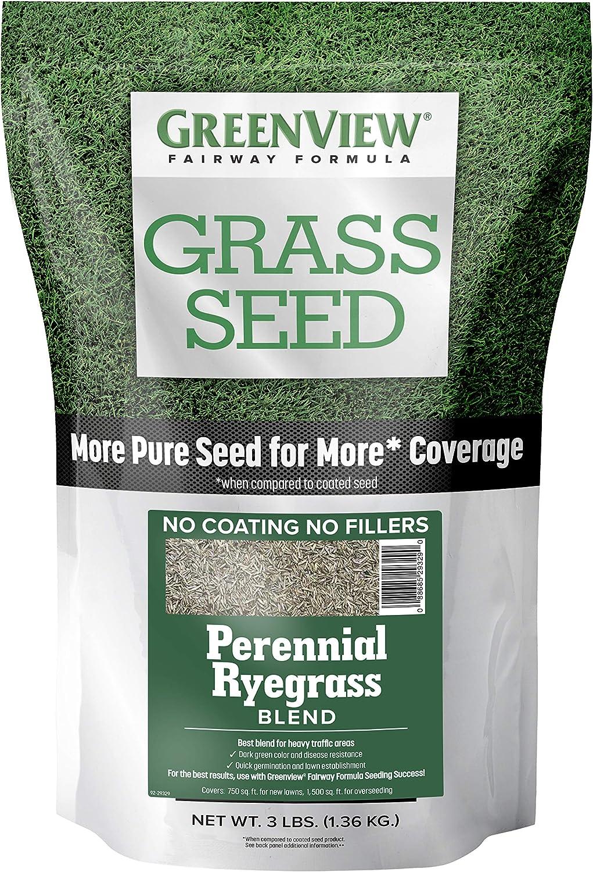 GreenView 2829353 Popular Fairway Formula Grass Popular popular Ryegrass Perennial Seed