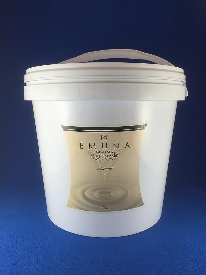 航海の必要とエムナーミネラルソルト 5kg クリスタル