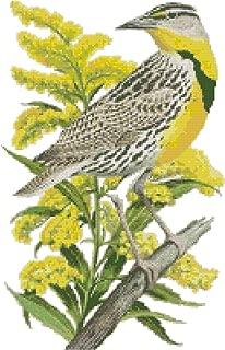 Nebraska State Bird and Flower Western Meadowlark and Goldenrod Counted Cross Stitch Pattern