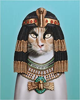 "Empire Art Direct Pets Rock Cleopatra Graphic Wrapped Canvas Cat Wall Art, 20"" x 16"" x 2"", Ready to Hang"