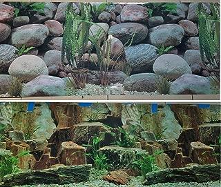 ada aquarium background