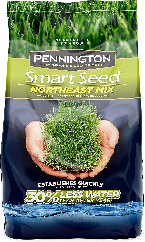 Pennington 100526638 Smart Louisville-Jefferson County Mall Northeast Mix Seed lb 3 Grass Industry No. 1