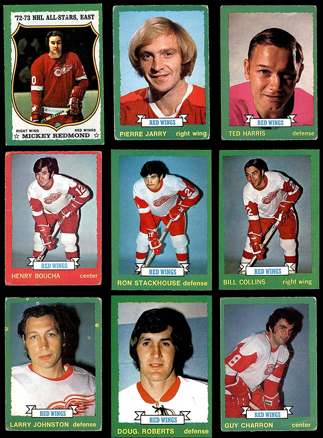 1973-74 Japan's largest assortment Our shop most popular O-Pee-Chee Detroit Red Wings Team Near W Set