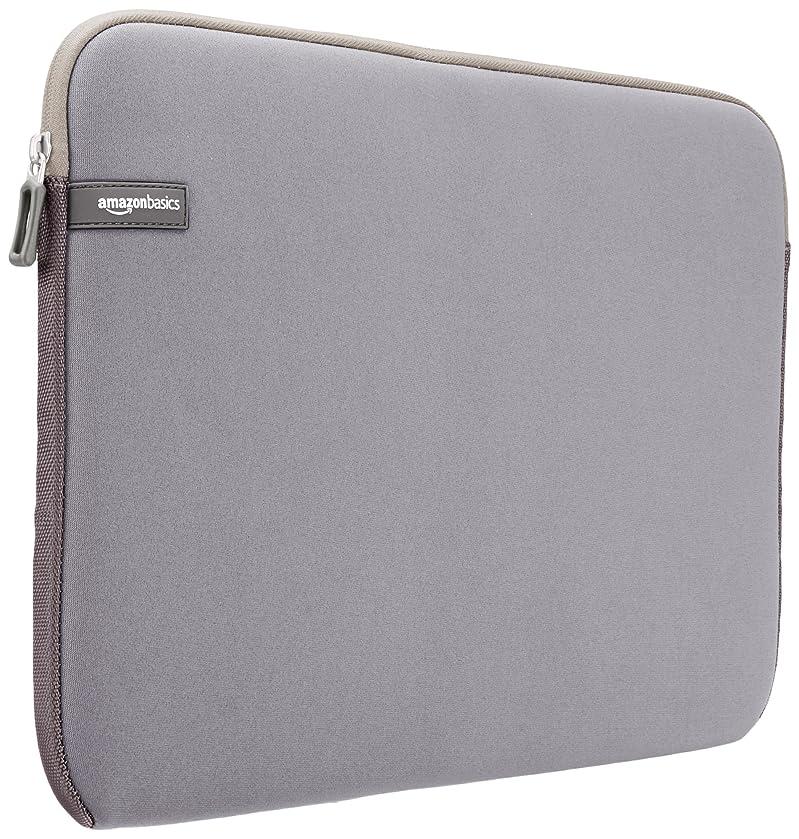 AmazonBasics 15.6 Inch Laptop Computer Sleeve Case - Grey