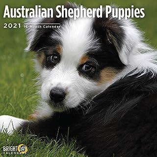 Dog Accessory Brands Australia