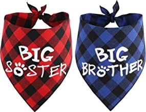 big brother big sister announcement