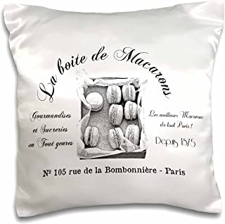 3dRose pc_164658_1 French Macarons Vintage-Pillow Case, 16 by 16