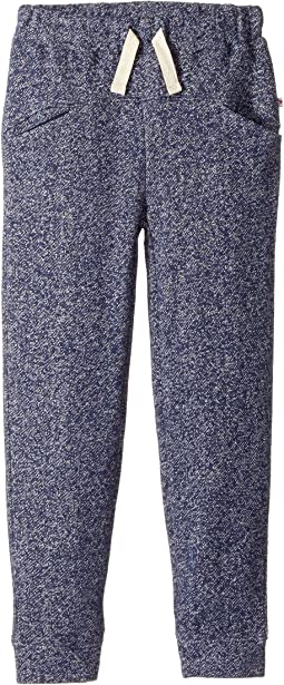 Appaman Kids - Super Soft Knit Alpine Jogger (Toddler/Little Kids/Big Kids)