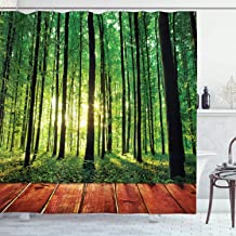 Ambesonne Forest Shower Curtain, Trees Forest Picture from Indoor Sun Rays as Background Wooden Floor Art Print, Cloth Fabric Bathroom Decor Set with Hooks, 70 Long, Green Orange