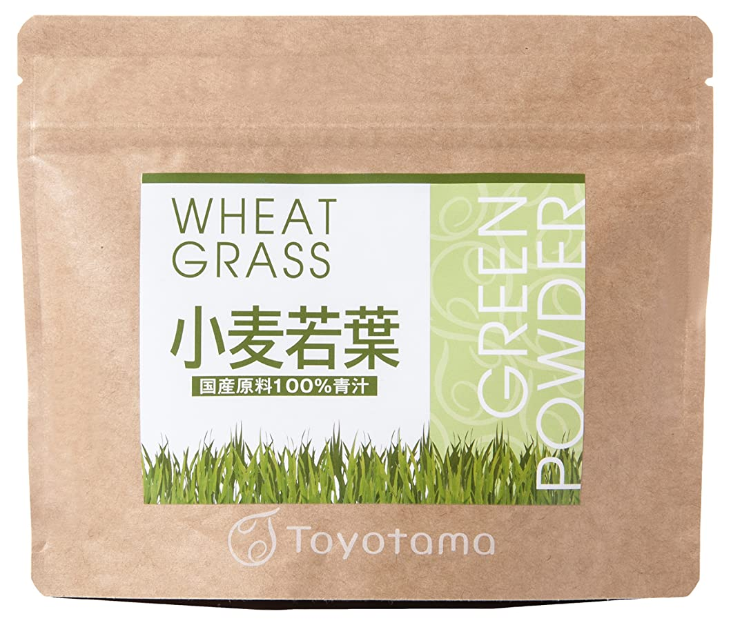 ピグマリオンばかふりをするトヨタマ(TOYOTAMA) 国産小麦若葉100%青汁 90g (約30回分) 無添加 ピュアパウダー 1096314