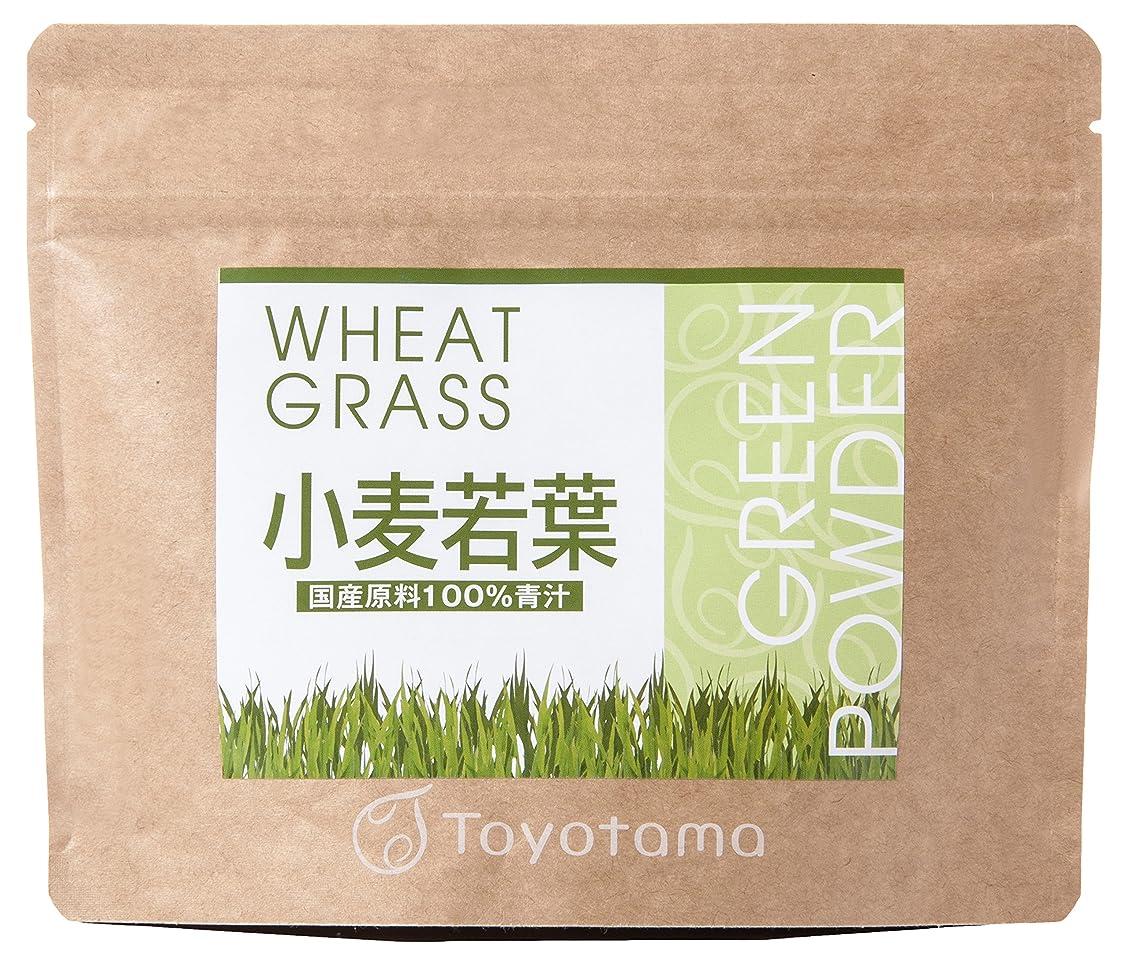 腐敗無実記念碑的なトヨタマ(TOYOTAMA) 国産小麦若葉100%青汁 90g (約30回分) 無添加 ピュアパウダー 1096314