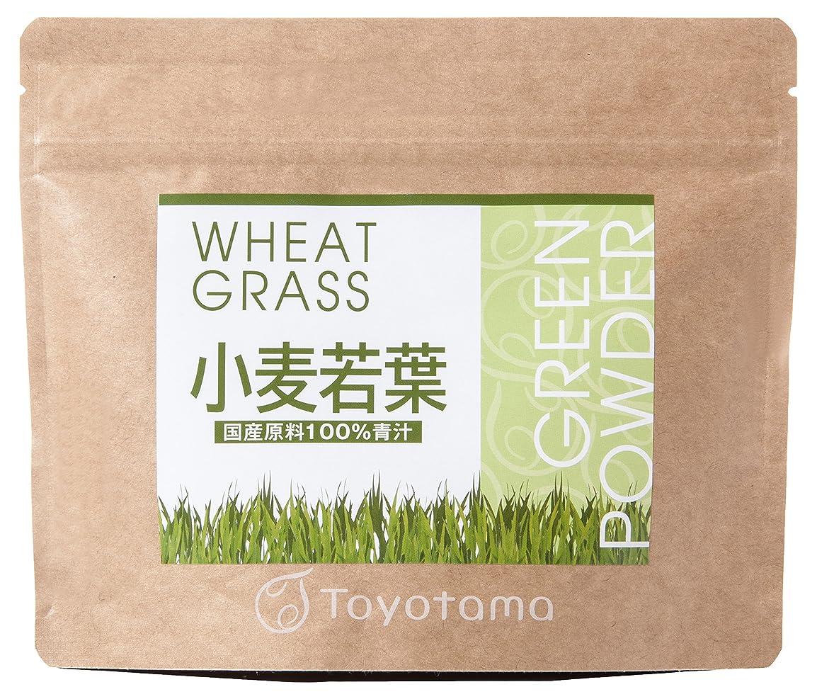 スライム米ドルジャングルトヨタマ(TOYOTAMA) 国産小麦若葉100%青汁 90g (約30回分) 無添加 ピュアパウダー 1096314