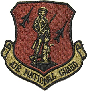 U.S. Air Force Air National Guard OCP Patch - Spice Brown