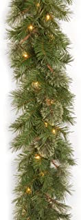 National Tree 9 Foot by 10 Inch Atlanta Spruce Garland with 50 Clear Lights (AT7-300-9A-1)