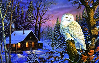 Night Watch 1000 Piece Jigsaw Puzzle by SunsOut
