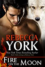 Fire on the Moon (Decorah Security Book 19)