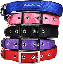 Downtown Pet Supply Deluxe Adjustable Thick Dog Collar, (Blue, Red, Black, Purple, Pink - Small, Medium, Large, or X-Large)