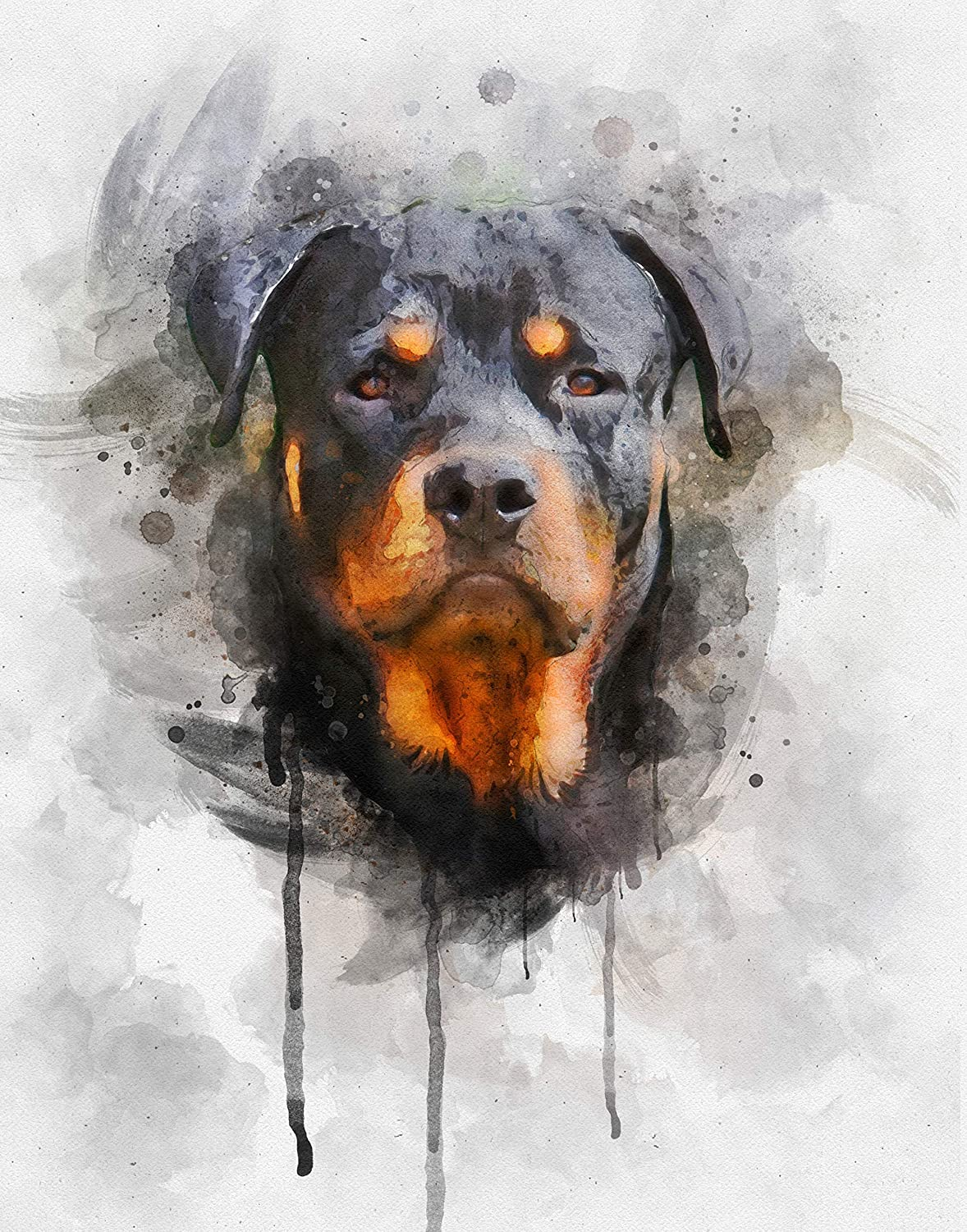 Philadelphia Mall Rottweiler Dog Watercolor Art Print - New Shipping Free Shipping Various Rottweile Sizes in