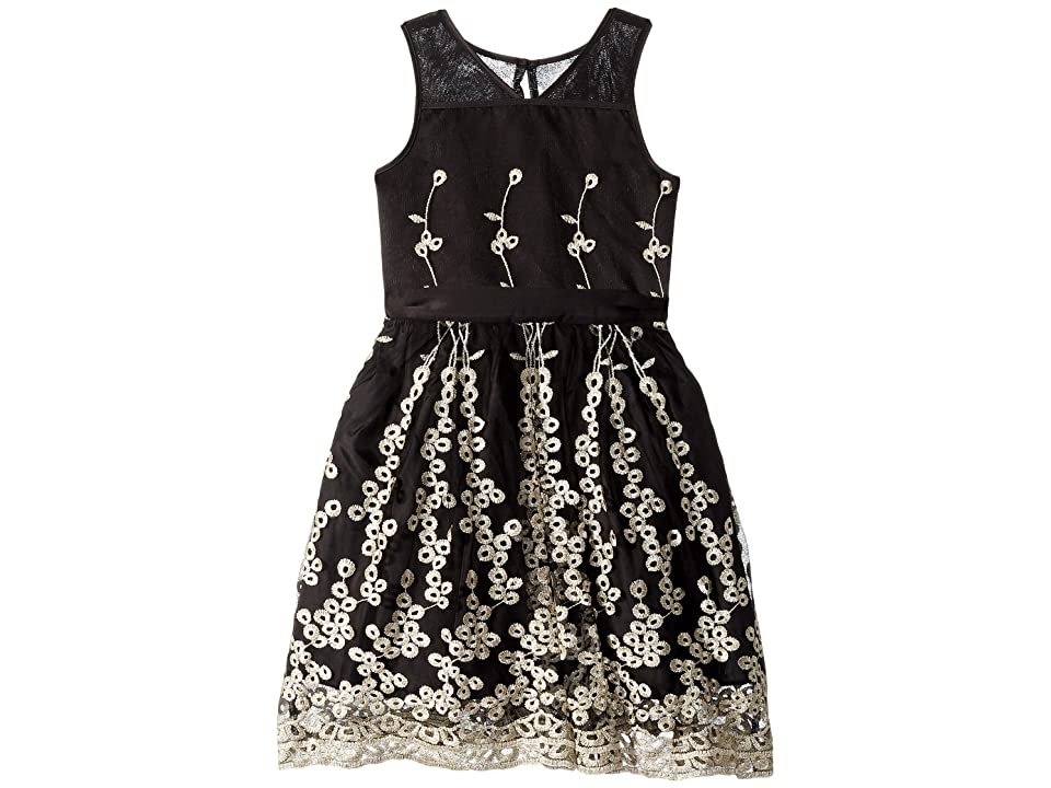 Nanette Lepore Kids Matte Satin Dress w/ Embroidery (Little Kids/Big Kids) (Black) Girl