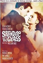 Splendor in the Grass (1961)