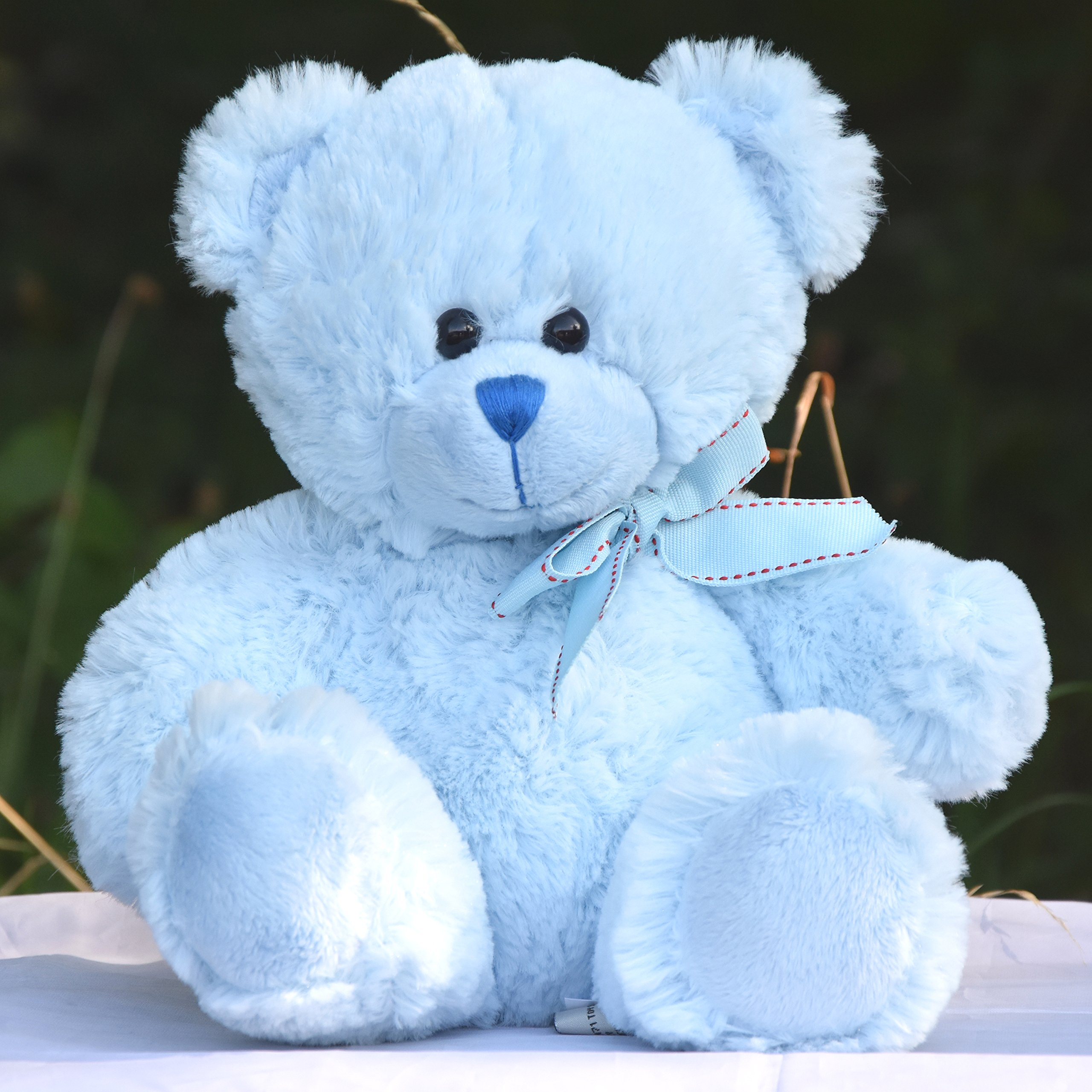 Suki Baby Hug-a-Boo Super Soft Plush Musical Sleeping Bear with Soft Boa Blankie Pink