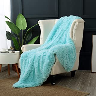 Reafort Luxury Long Hair Shaggy PV Fur Faux Fur Oversized Throw Blanket (Aqua, 60