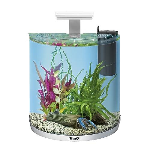 Aquarium Klein: Amazon.de