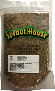 The Sprout House HOT and Spicy 1 Pound Certified Organic Non-gmo Sprouting Seeds Yellow Mustard and Red Radish