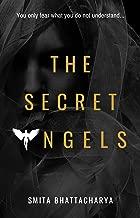 The Secret Angels (Darya Nandkarni's Misadventures Book 2) (English Edition)