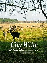 Best wild city documentary Reviews