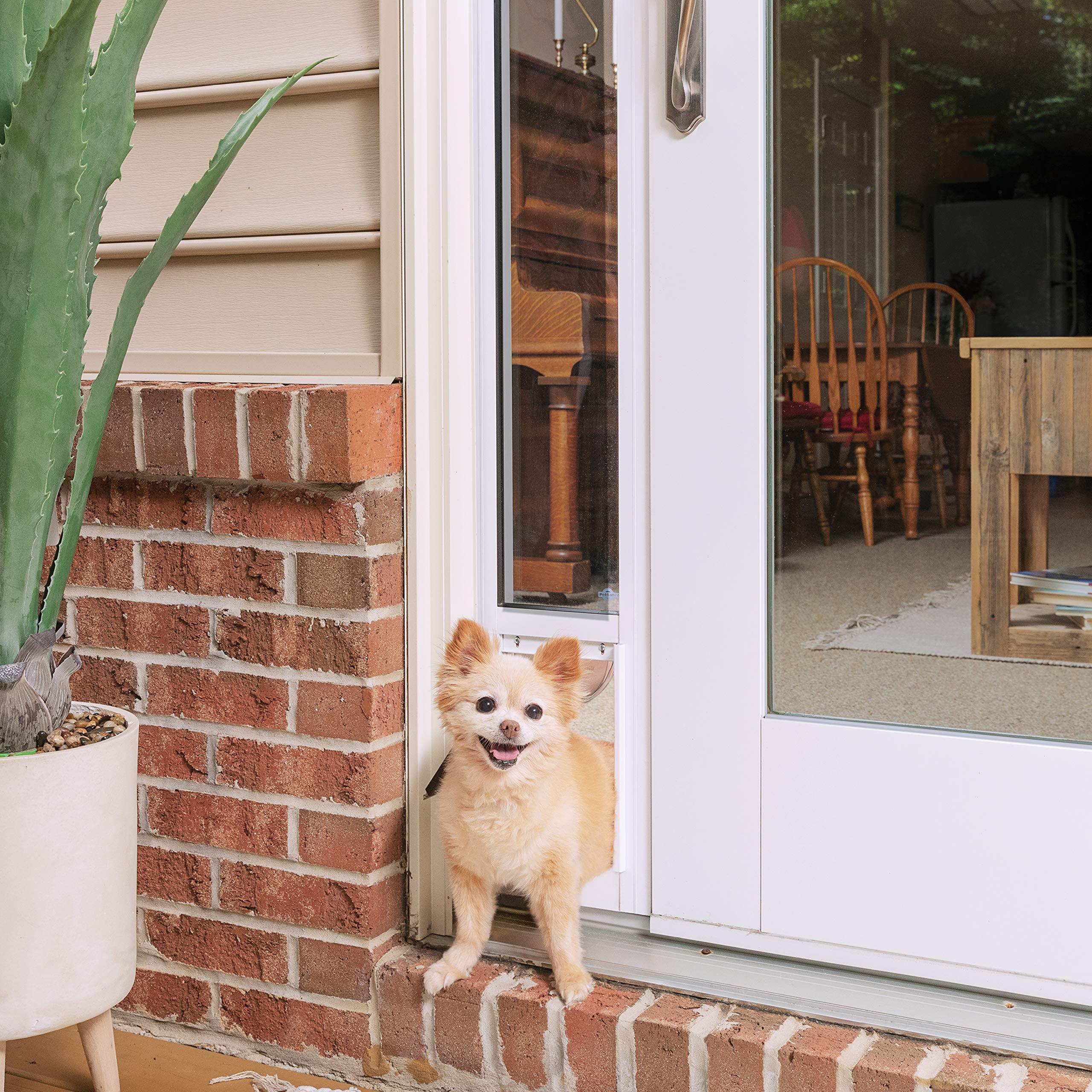 PetSafe Puerta corredera de Cristal para Mascotas: Amazon.es: Productos para mascotas