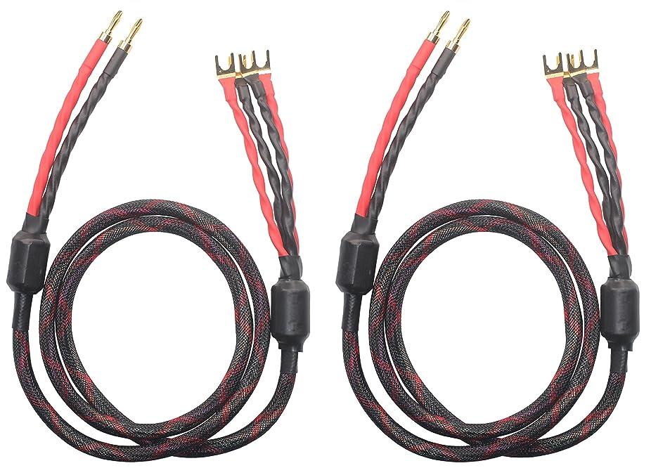 キリンドレイン振るk2b-4y bi-wireスピーカーケーブル(2バナナプラグ?–?4スペードプラグ、1ペアセット(合計4バナナプラグ8スペードプラグ、k2b-4y