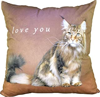 JINKAIJIA Bedding Throw Pillows 18 x 18 Inches ,Bed、Couch and Office Pillows - Indoor Decorative Pillows (BZ-4, 18X18 in)