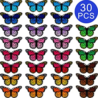 Butterfly Patches Embroidered Badge Iron and Sew Patch Applique for DIY Decor T-Shirt Jacket Shoes Bags Repair Patch (30)