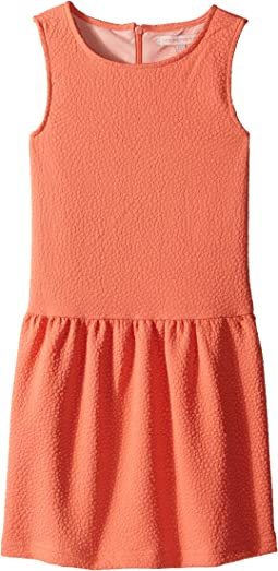 Classic Perry Drop Waist Dress with Popcorn Fabric Detail (Toddler/Little Kids/Big Kids)