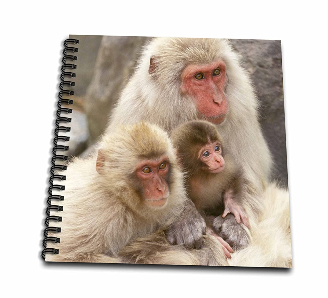 運搬ナイトスポット使用法Danita Delimont?–?Monkeys?–?日本、長野、Jigokudani、雪Monkey family-as15?rti0487?–?Robティレー?–?Drawing Book 12