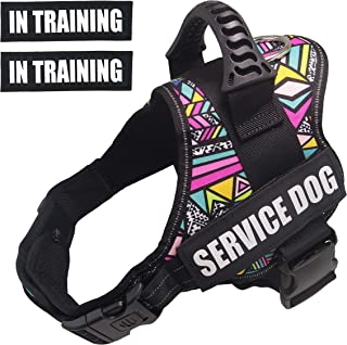 Dihapet Dog Harness, Service Dog Vest, No Pull No Choke Dog Vest for Training Walking Jogging