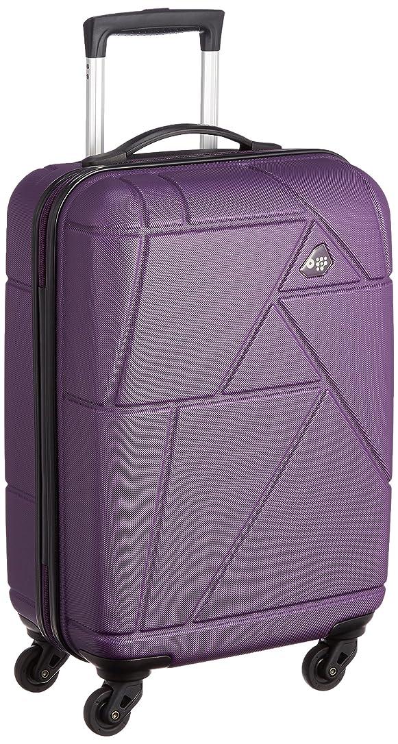 一族すごいそれにもかかわらず[カメレオン] スーツケース  VERONA  35L